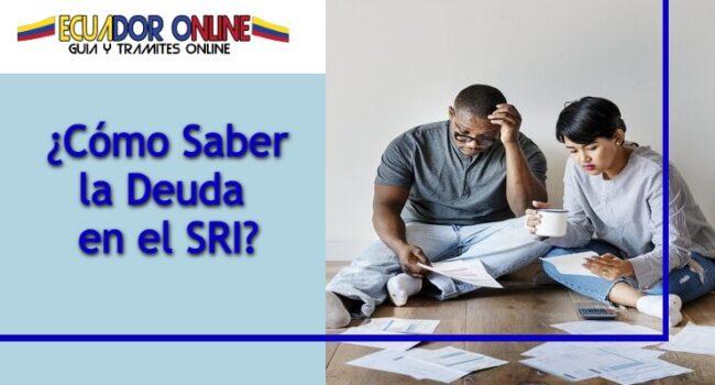 Cómo consultar de manera fácil la consulta de la deuda SRI Linea de Ecuador