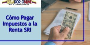 Cómo pagar los impuestos sobre el patrimonio Ecuador
